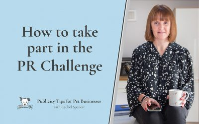 How to take part in the Publicity Challenge for Pet Businesses