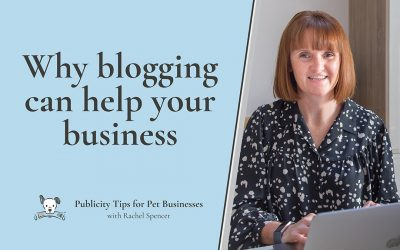 Why blogging can help your pet business