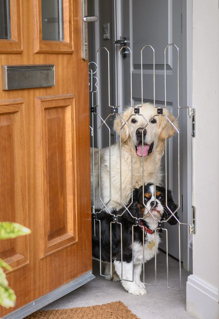Dog-G8 - a gate that stops dogs escaping when the front door opens