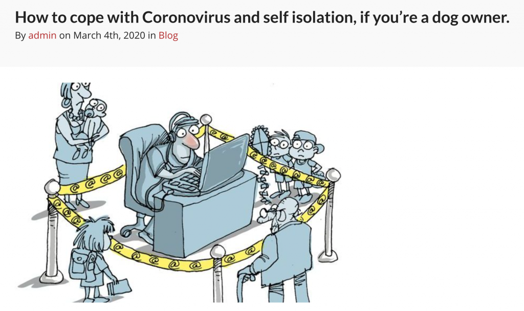 How to cope with Coronavirus if you're a dog owner