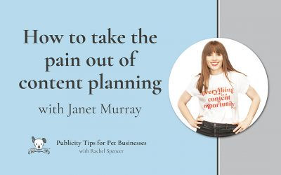 Taking the pain out of content planning with Janet Murray