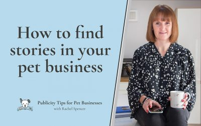 How to find stories in your pet business