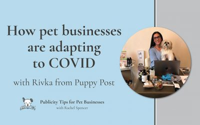 How pet businesses are adapting to COVID with Rivka from Puppy Post