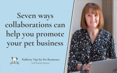 Seven ways collaborations can help you promote your pet business