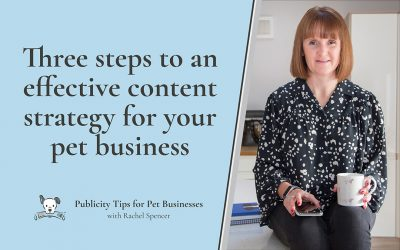 Three steps to creating an effective content strategy for your pet business